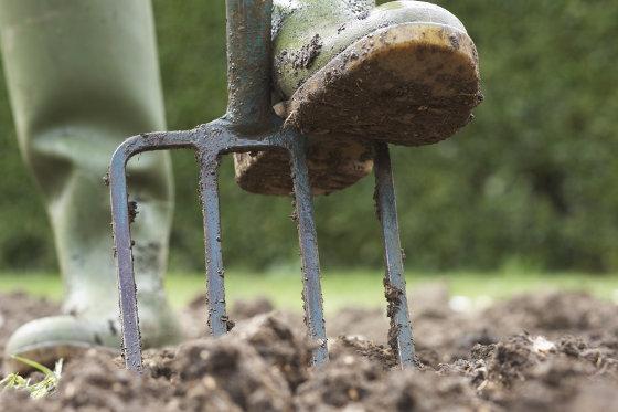 how-to-prepare-soil-for-a-garden